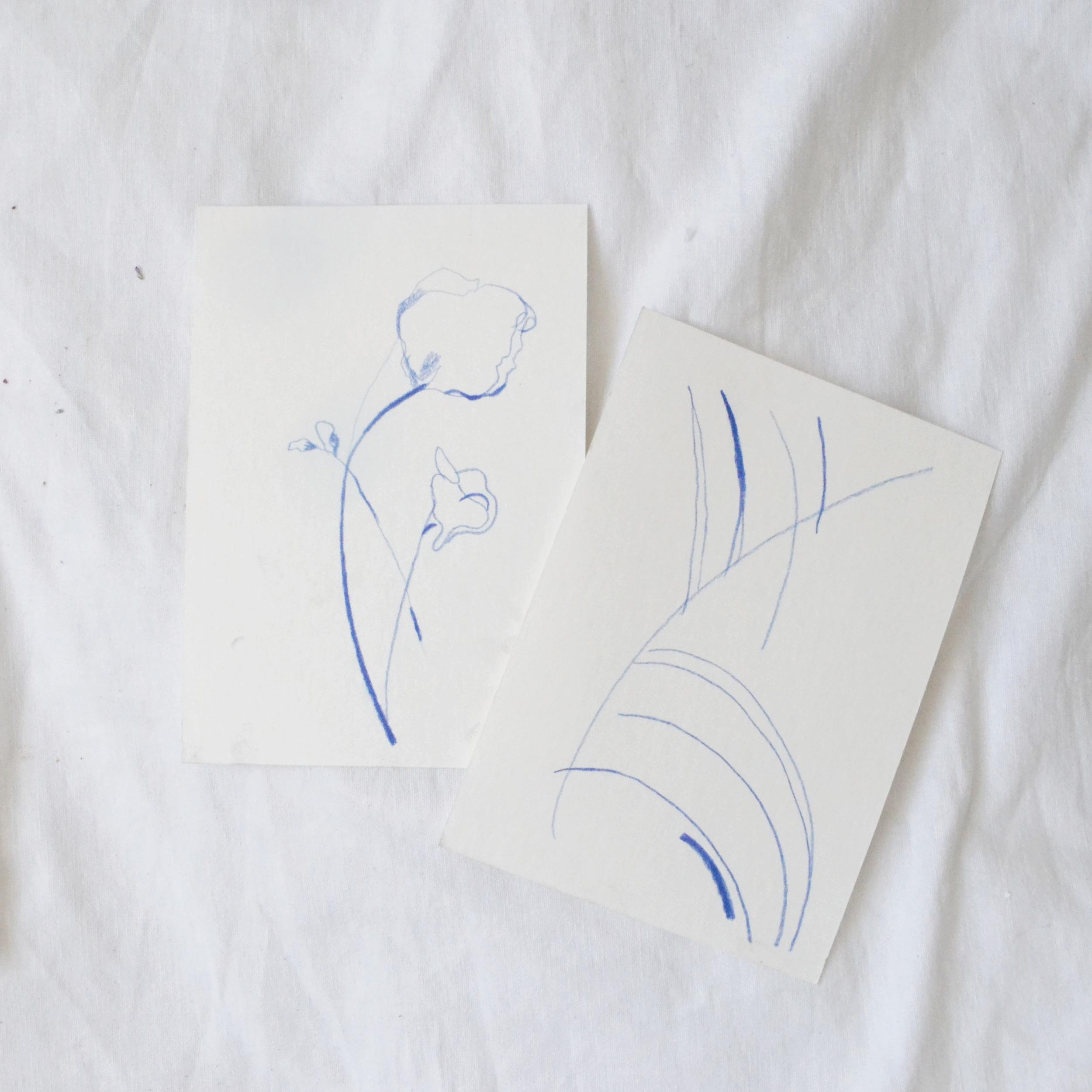 blue floral line studies laura gee