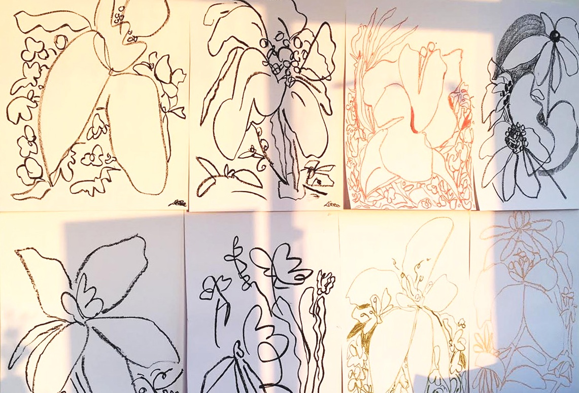 WILD FLOWER DRAWINGS - NEW COLLECTION