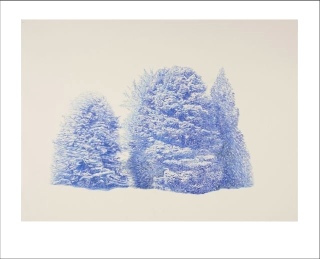 Intangible Aspects of the Forest by Stacey Cushner. Pencil on paper explorations on the smooth and wispy, twisted and knotted, and also elegantly sculptural woods.  @lizclementart #NewYorkArt #MuseumShow #Exhibition #Collecting #NYart #Show ArttakesManhattan.org