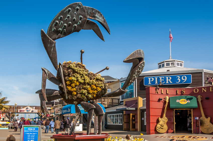 Pier 39 features food, fun, and the infamous sea lions.