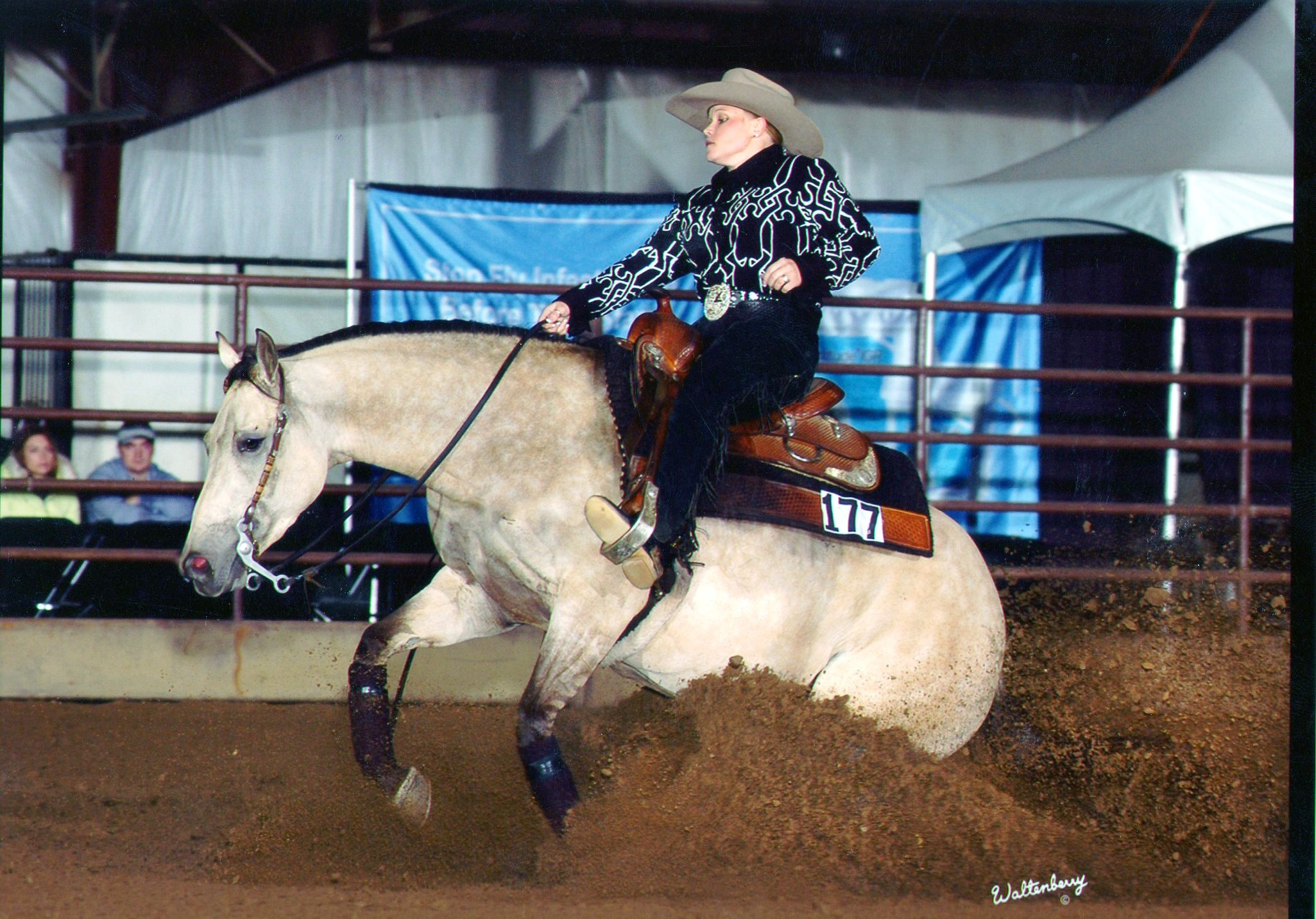 """Dun Its Déjà Vu,  2002 dun mare by Hollywood Dun It and out of Miss Okie Too by Muskeg.  A producer of earners of $167,007 , """"Deja"""" is the  earner of $26,288 . She was the Gordyville Breeders Cup Derby Non-Pro Co-Champion in 2006 and 3rd in 2007. She also was the 2005 NCRHA Futurity Non-Pro Reserve Champion."""