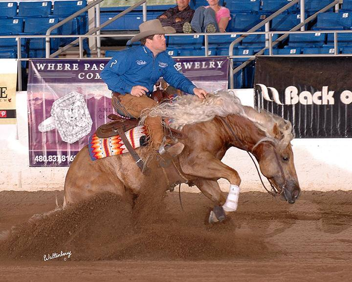 KR Billy Bob  2012       NRHA Open Futurity Finalist, 2012 Scottsdale Classic Open Futurity Reserve Champion, High Roller Reining Classic Open Derby Reserve Champion, AQHA World Championship Show Junior Reining Top Ten finisher, and earner of  $33,950 .