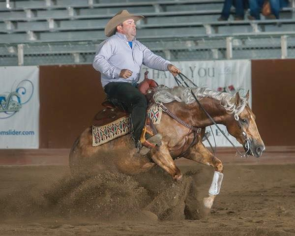 Designed with Shine  A three year old in 2014, was the Reining By the Bay Open Futurity Reserve Champion, AZRHA Best of the West Open Reining Futurity Level 3 and 4 Open Champion, and earner of over  $13,600  in her three year old year.