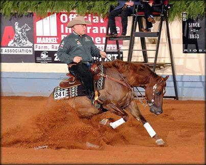 Tinseltown Fly Guy  2013NRHA Open Futurity Reserve Champion, Hollywoodstinseltown Open Futurity & Turnabout Farm Non Pro Futurity 3rd Place, Heritage Futurity Reserve Champion, Gordville Breeders Cup Champion, Whimpys Little Step Derby Champion, 2014 NRBC 7th place, 2015 NRBC 5th place Earner of  $214,964.28+