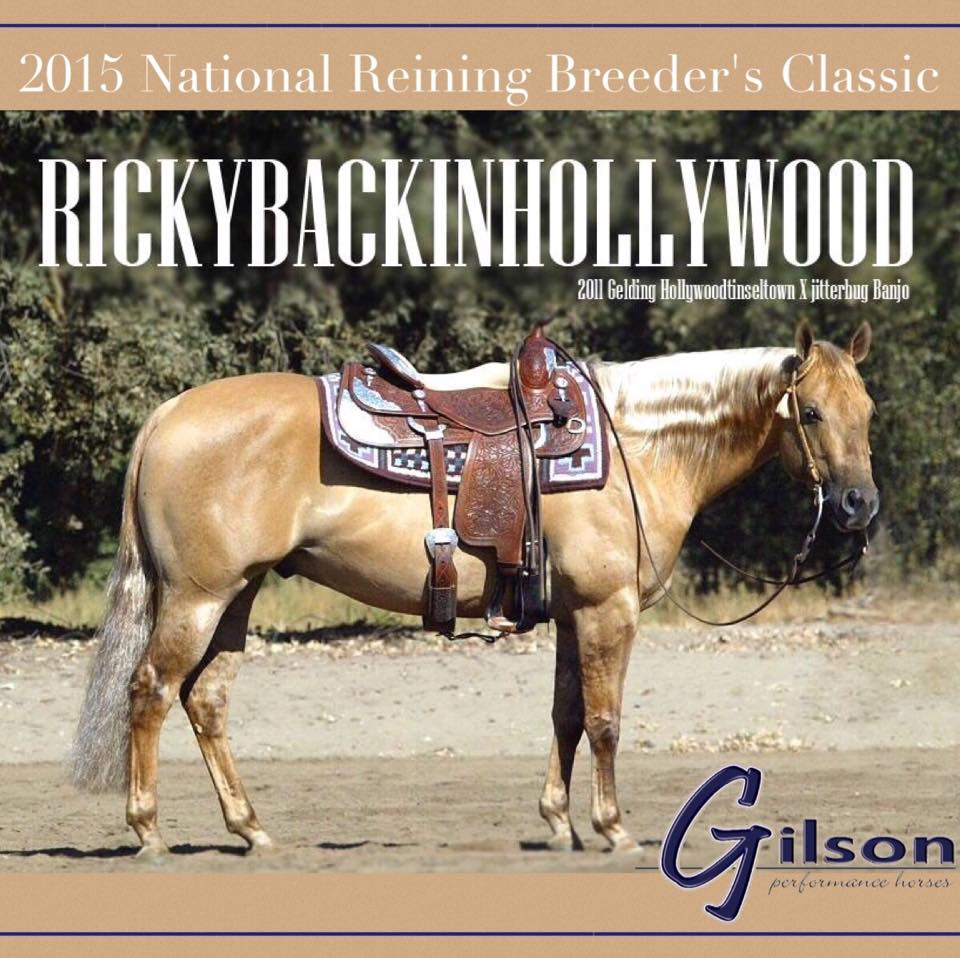 Rickybackinhollywood   Reining By the Bay Level 4 Co Reserve Champion, Level 3 Reserve Champion, and Level 2 Champion in 2014, 15th at the 2015 NRBC Open, and earner of  $12,698.08+