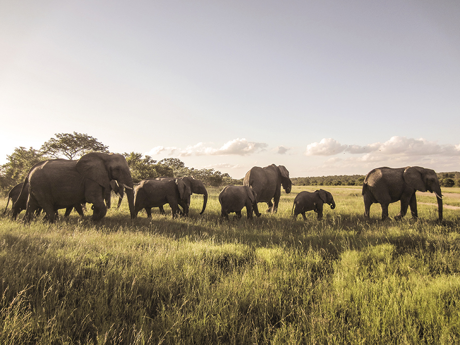 SouthAfrica_2015_055.JPG