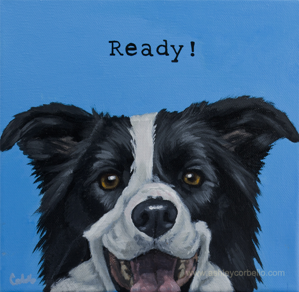 Border Collie pet painting - Ashley Corbello