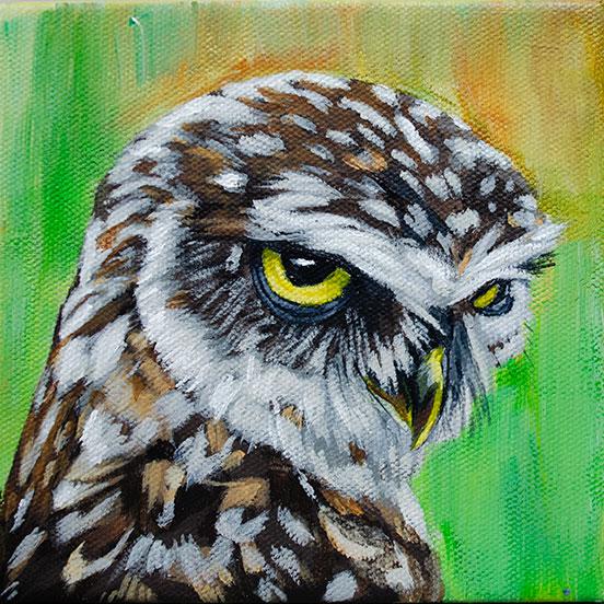 ashleycorbello-owl.jpg