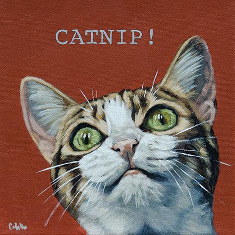 catnip-web.jpg