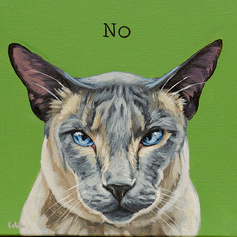 no-cat-web.jpg