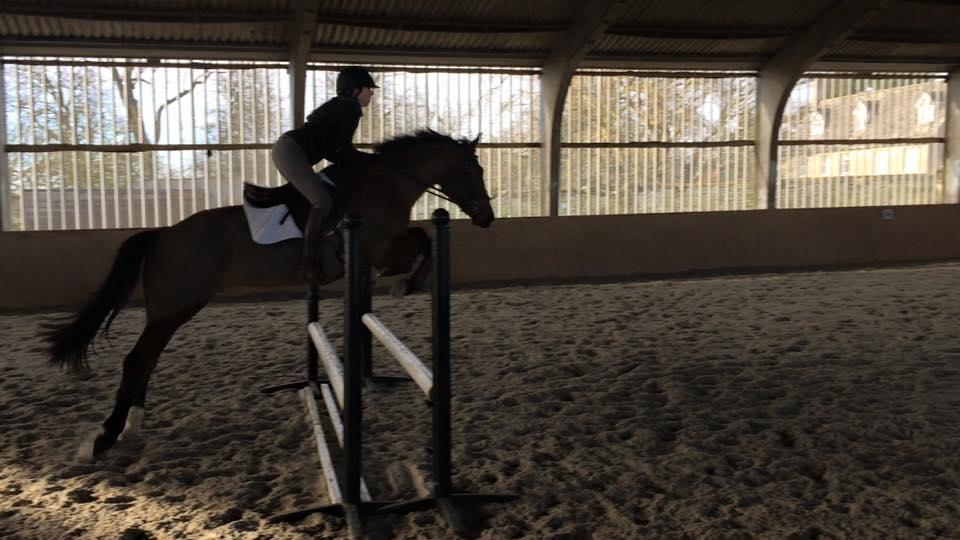 Paloma Jumping .jpg
