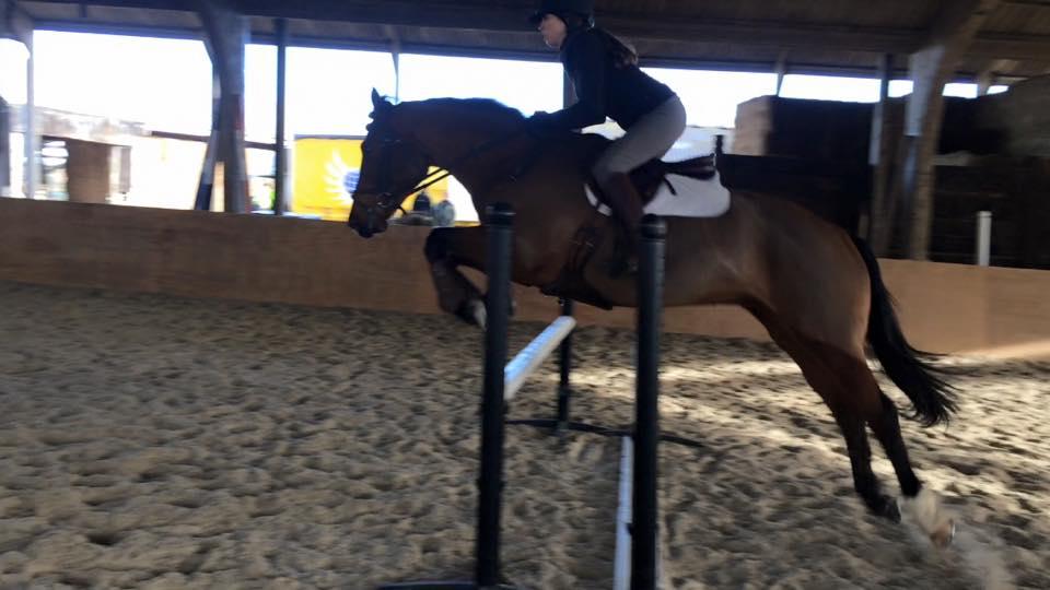 Paloma Jumping 2.jpg