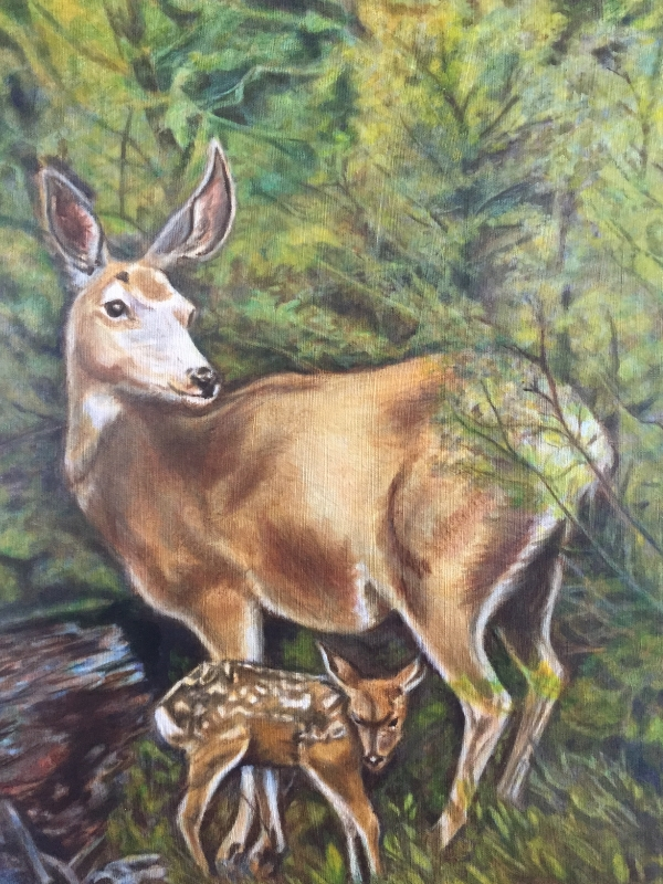 Deer and Fawn, oil paint, by Nancy Lee