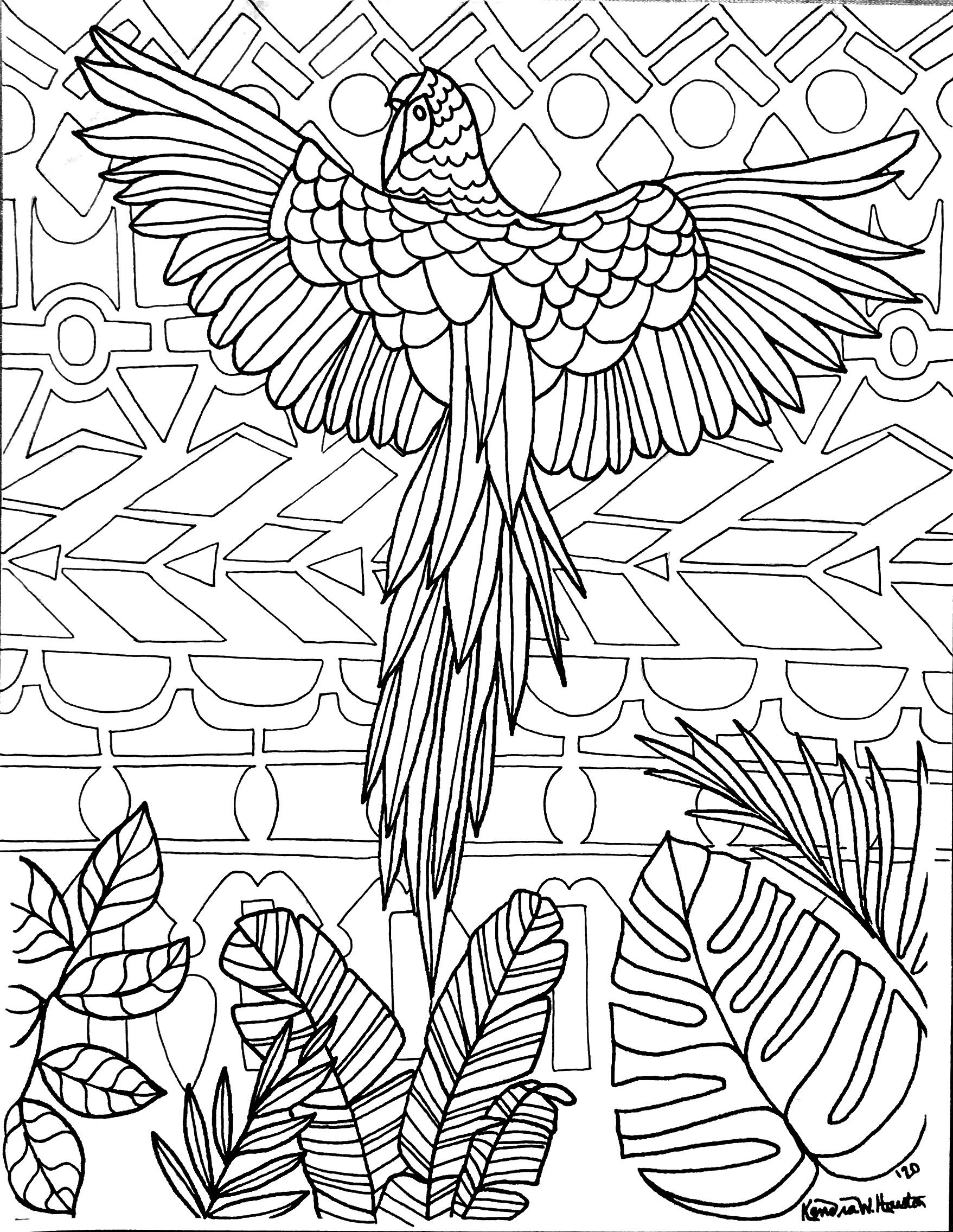 Parrot Adventure Coloring Pages: Adult And Kid — The Casual Reply