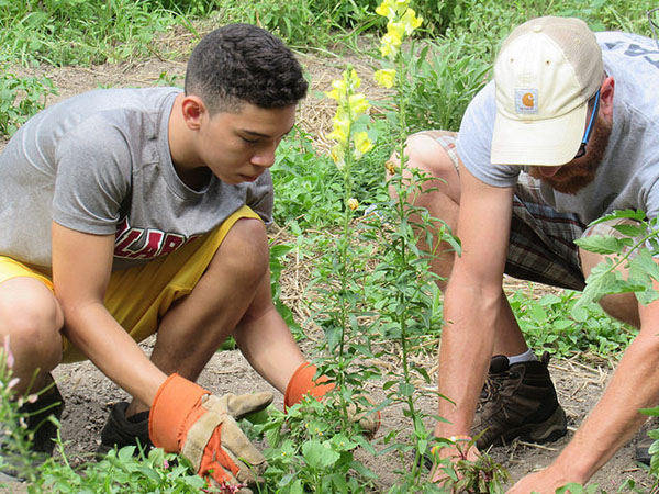 FB Gardening 1.jpg