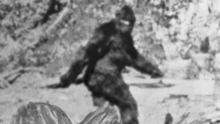 vows and promises big foot.JPG