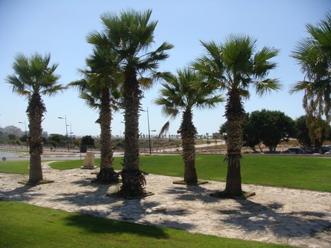 Ashkelon 9/11 Memorial - Ashkelon, Southern District, Israel