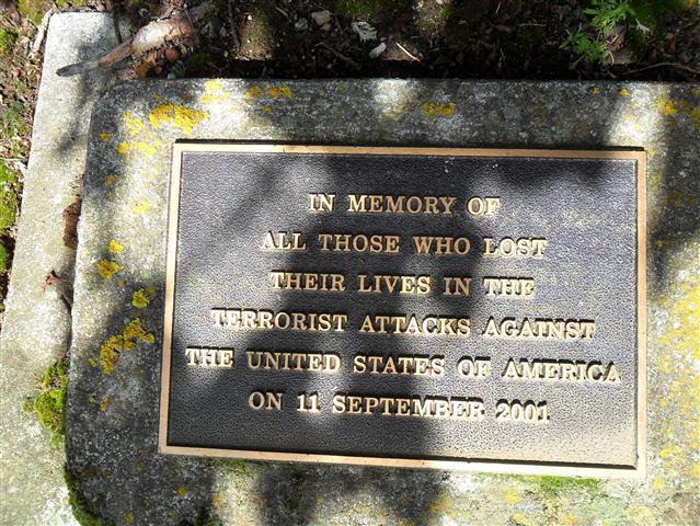 Cambridge Memorial Tree - Cambridge, New Zealand