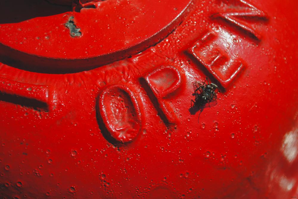 MACRO | Fire Hydrant