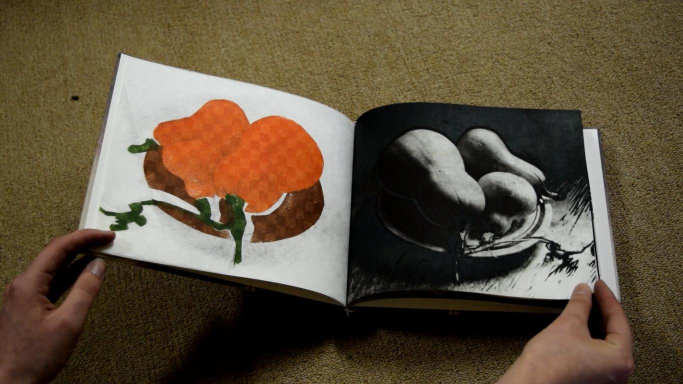Artist Book Videos