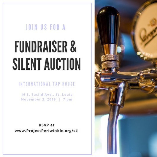 Attention St. Louis!! Join us November 2nd for a silent auction and fundraiser and help our mission of funding cancer research programs for a cure continue!