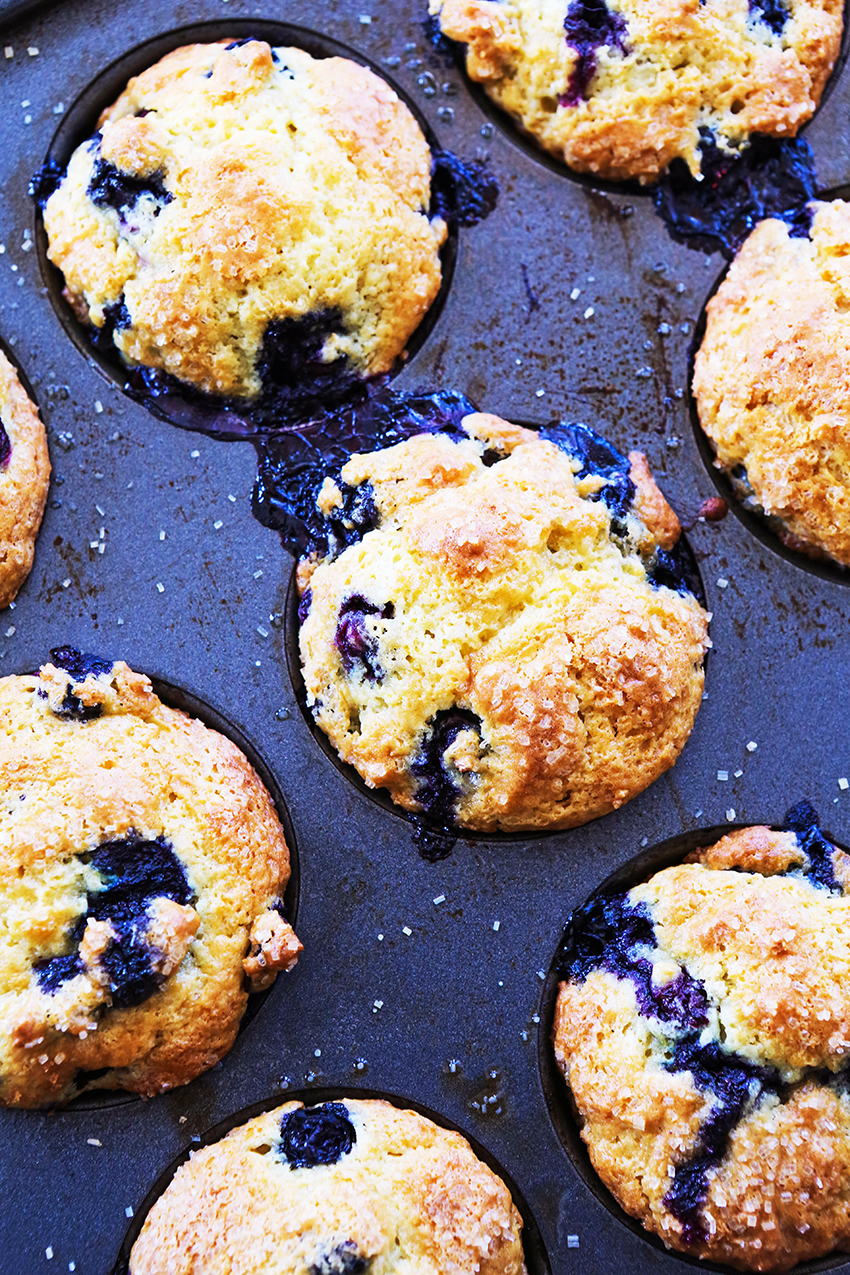 top view of blueberry muffins in pan