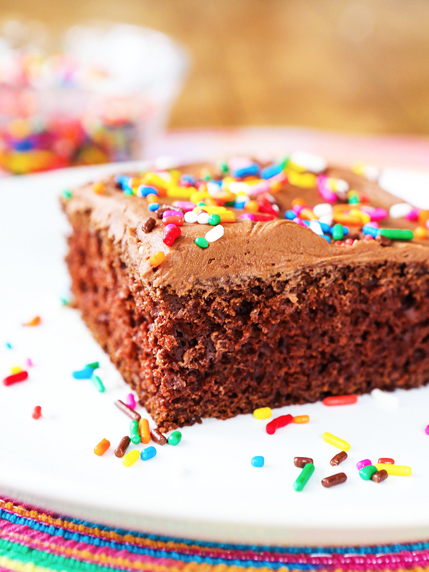 piece of chocolate cake with sprinkles on a white plate
