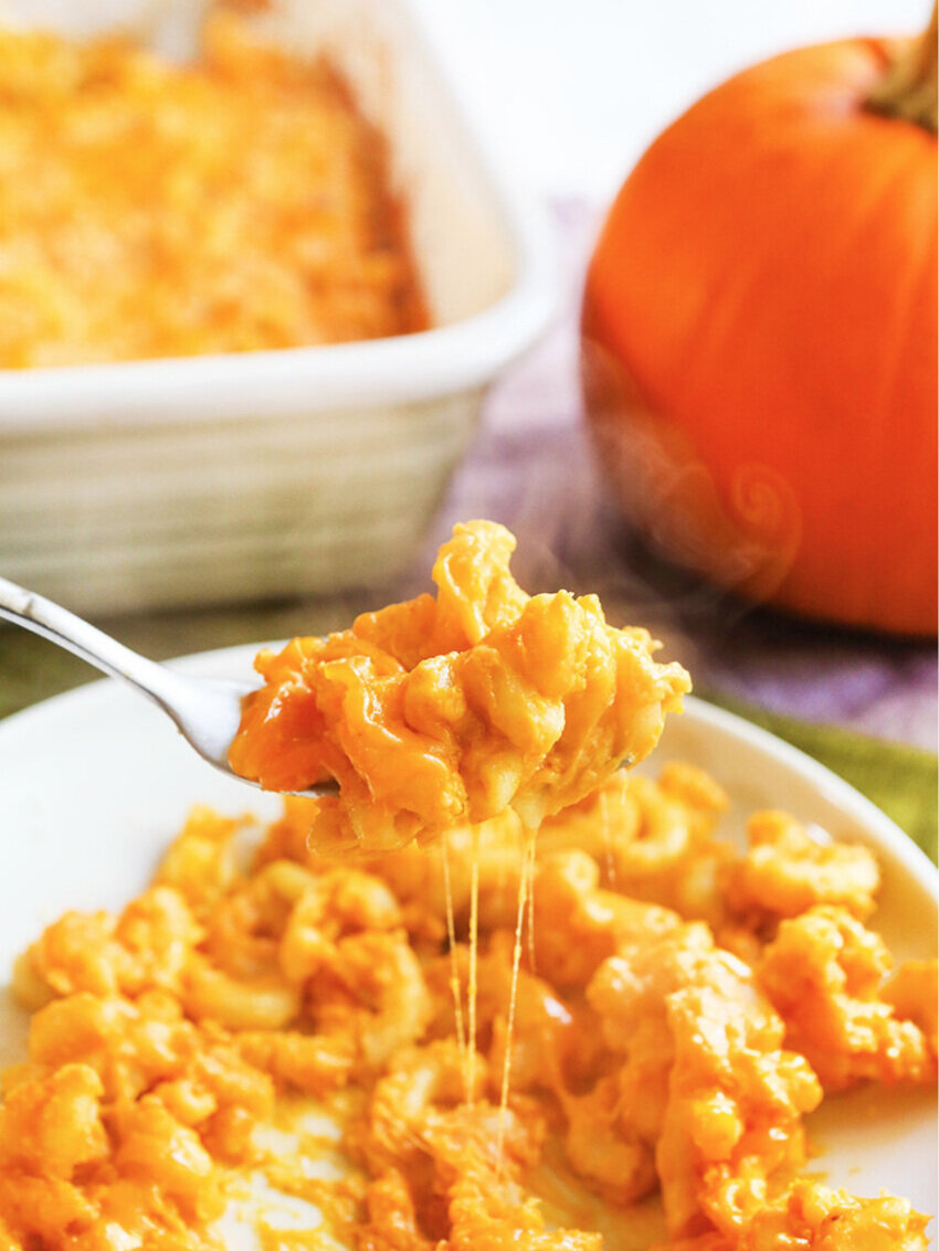 forkful of creamy pumpkin mac and cheese being lifted from a plate