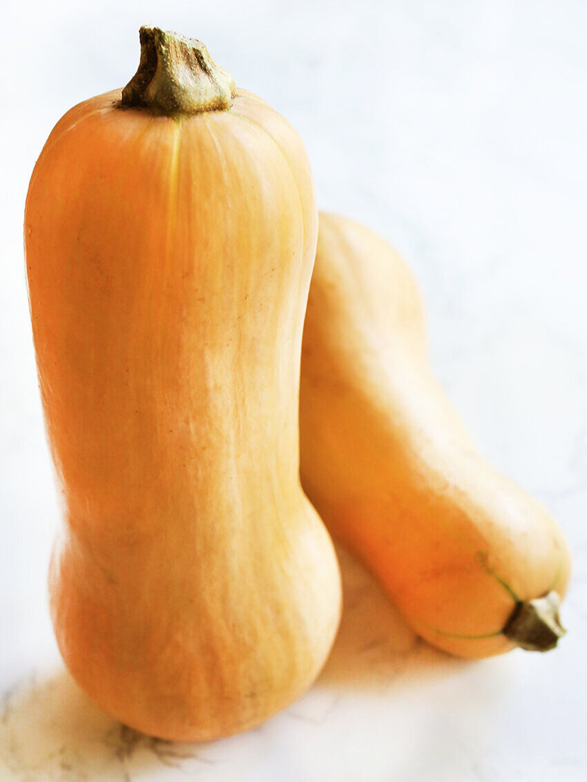 Two butternut squash standing upright.