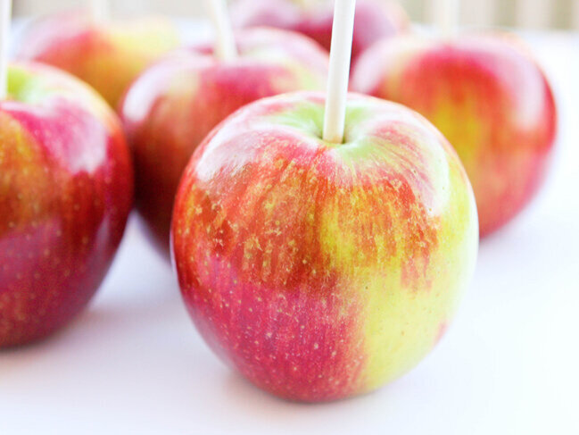 Apples with popsicle sticks jabbed into the tops