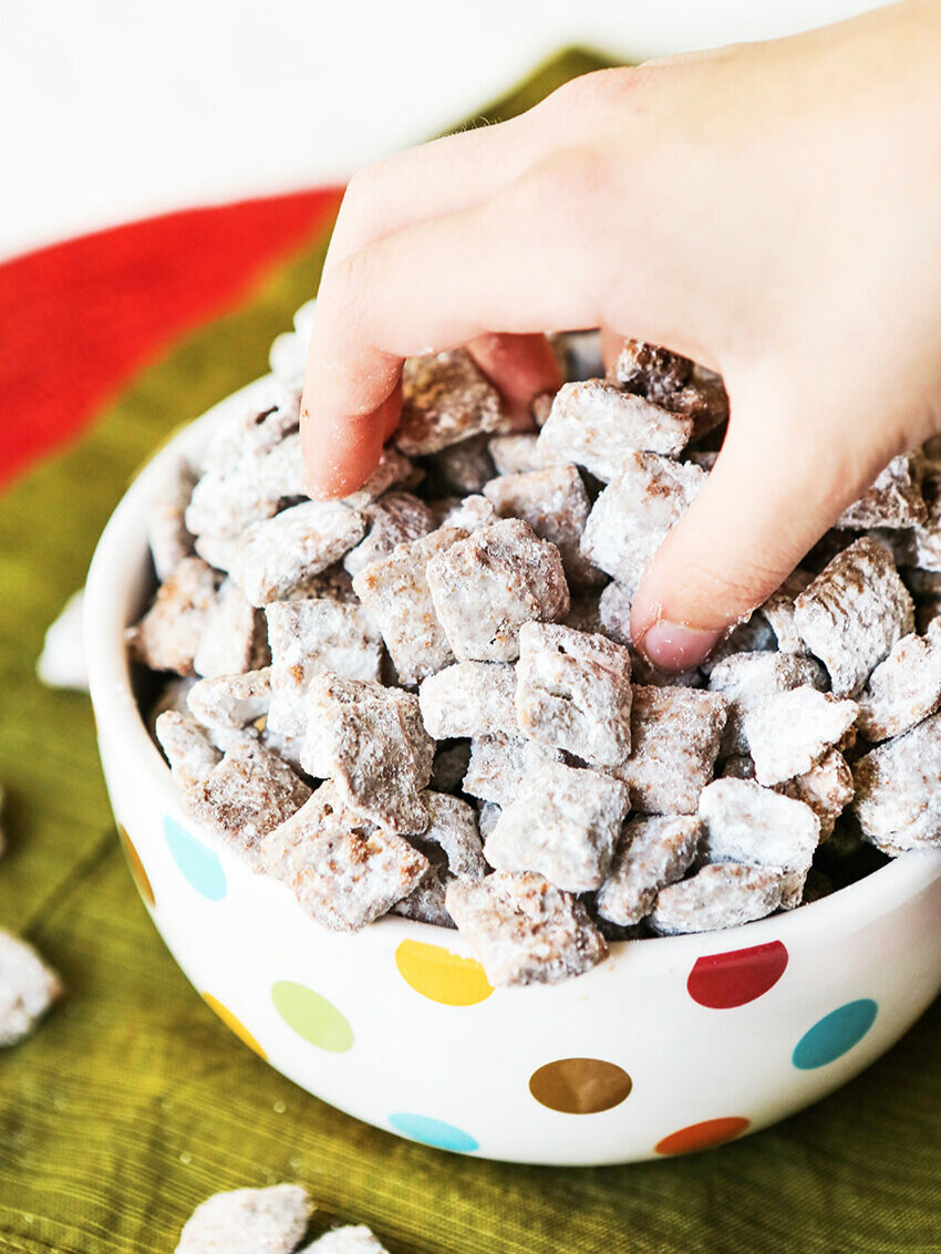 Hand reaching into a bowl of puppy chow