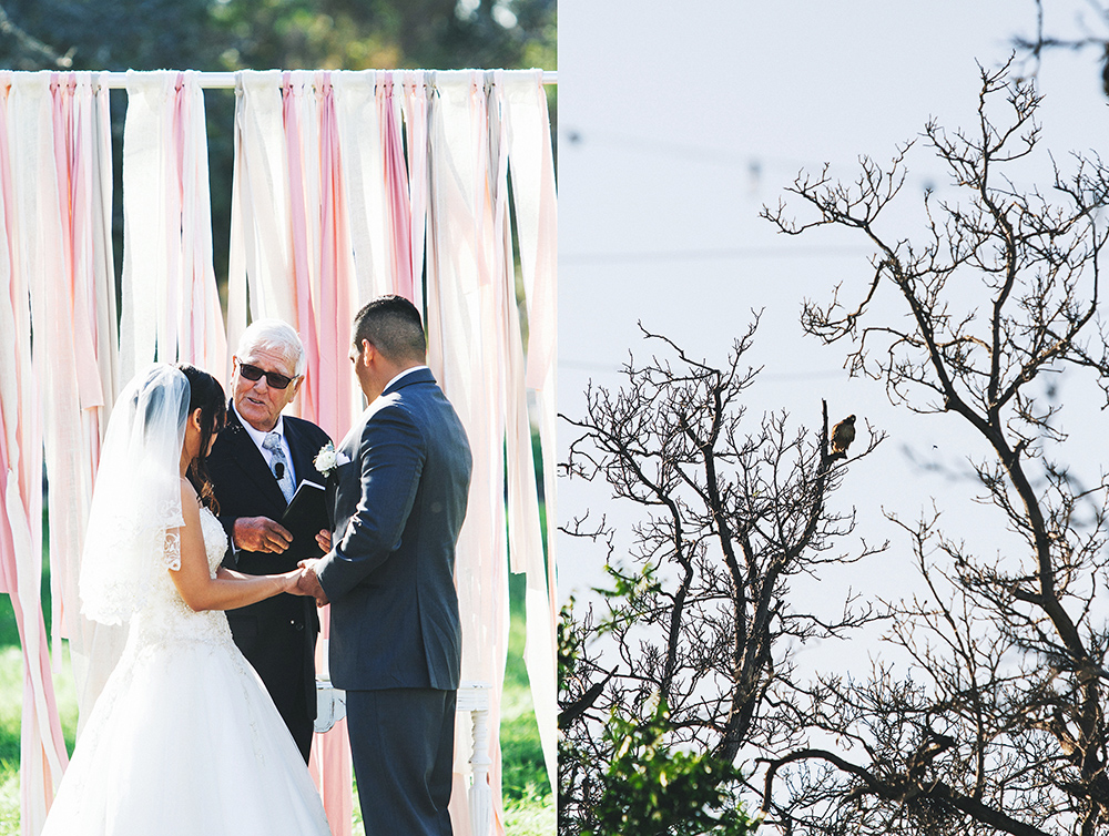 gracie_cesar_wedding_-55.jpg
