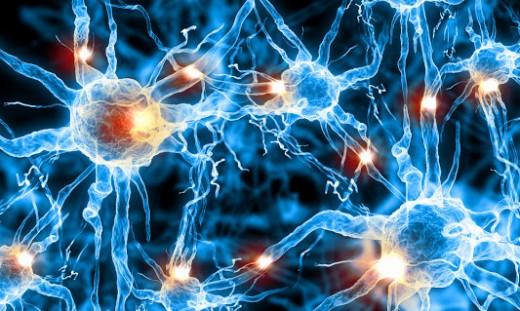 Light blue cells.jpg