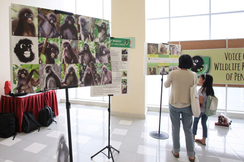 Exhibition at the University to raise awareness and support to wildlife conservation.