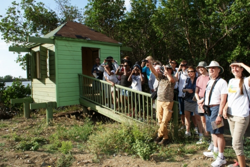 Participants in a free public Bird Walk hosted by Blue Flag site Divi Little Bay Beach Resort