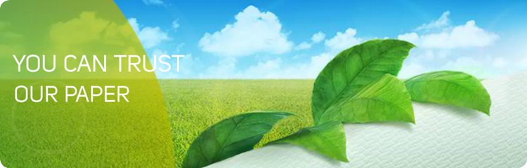 Lucart Group excels as an eco-sustainable business