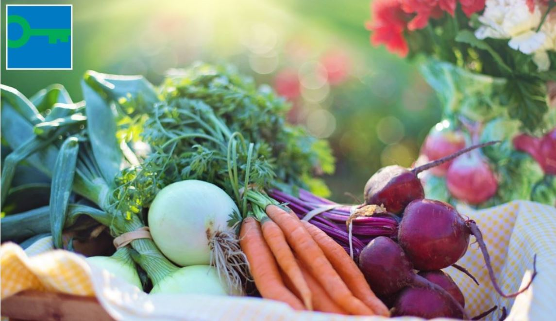 World Vegetarian Day.JPG