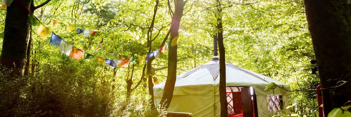 Carmanthenshire glamping site.jpg