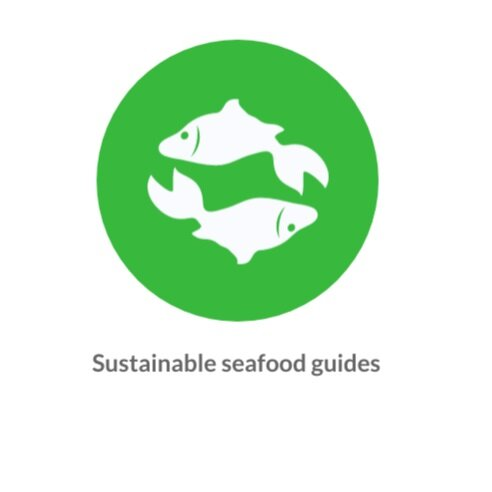 Sustainable+seafood+guides.jpg