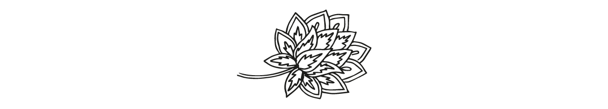 Indian_Floral_thin.png