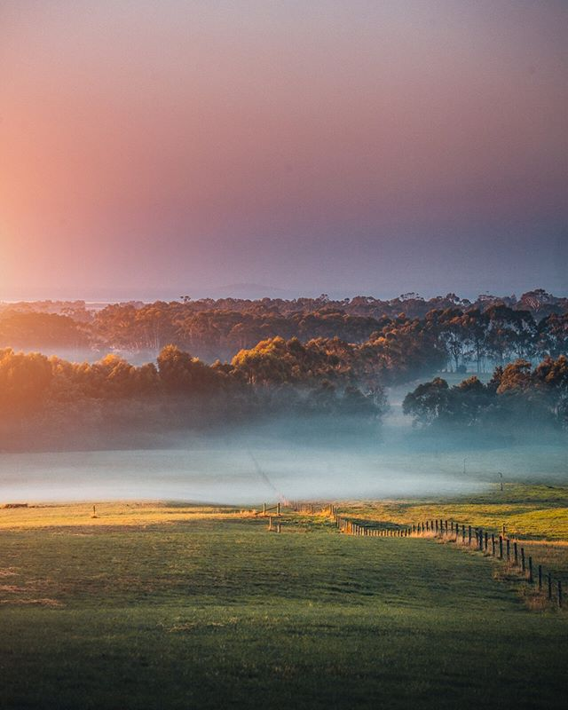 I love getting up for sunrise, even though I don't do it often I appreciate it a lot more. So glad we did on this day, I was hoping for some fog across the farms. 😍  how often do you watch the sunrise? ⠀⠀⠀⠀⠀⠀⠀⠀⠀ .⠀⠀⠀⠀⠀⠀⠀⠀⠀ .⠀⠀⠀⠀⠀⠀⠀⠀⠀ .⠀⠀⠀⠀⠀⠀⠀⠀⠀ .⠀⠀⠀⠀⠀⠀⠀⠀⠀ .⠀⠀⠀⠀⠀⠀⠀⠀⠀ #visitmelbourne #visitvictoria #wildernesstones #folkscenery #earthoutdoors #stayandwander #escapeandwonder #wowaustralia #mountainstories #roamtheplanet #mthrworld #natgeotravel #voyaged #wildernessnation #wondermore #AwakeTheSoul #yourhappyspace #moodygrams #agameoftones #9gag #photography #photographer #photooftheday #landscape #australia #sunrise #fog #nature #visualsofearth25r #whpweekend