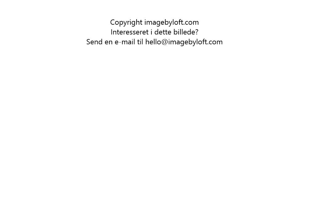 imagebyloft.com-20150619-_5D30261.jpg
