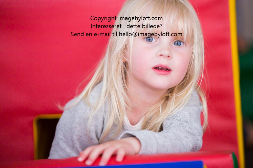 imagebyloft.com-20150619-_5D30287.jpg