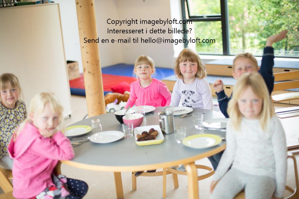 imagebyloft.com-20150619-_5D30870.jpg