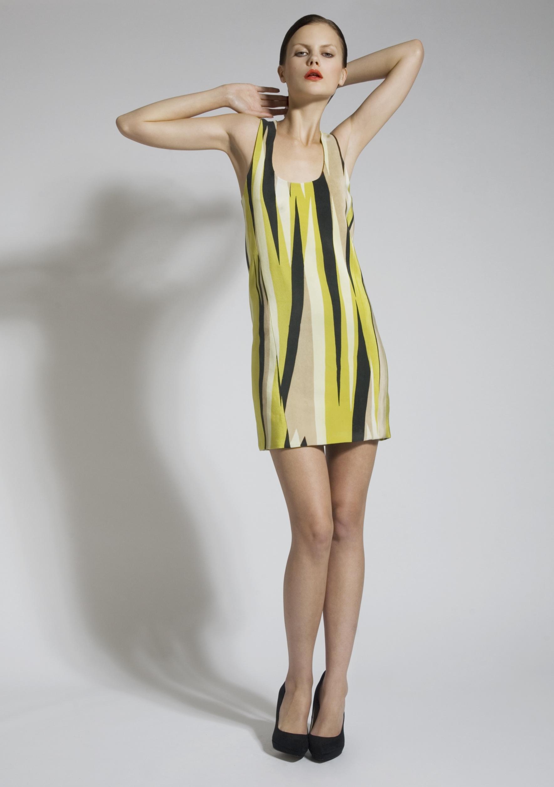 5 Silk Screen Lime Stripe Dress.jpg