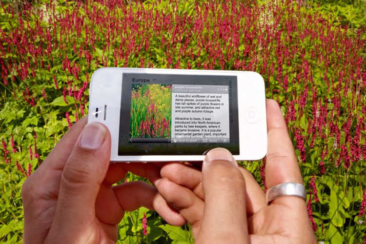 2012 Gardens app