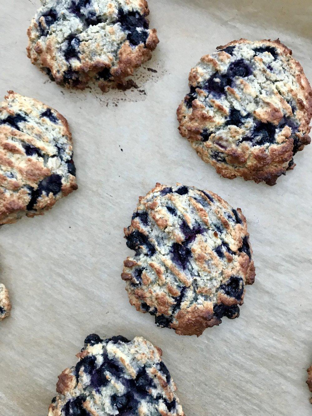 scones med blåbär