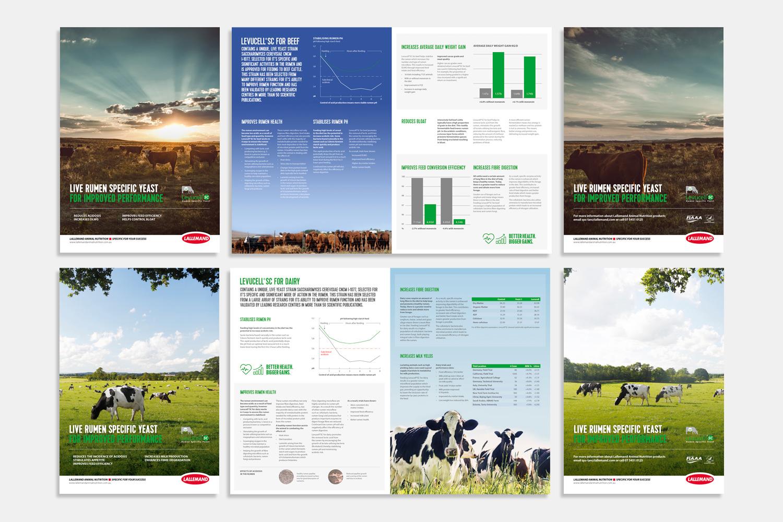 Lallemand-Brand-Brochures.jpg