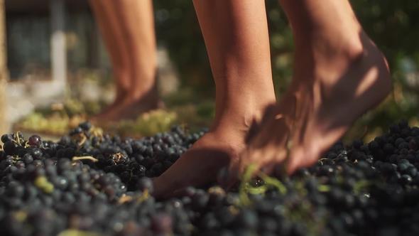 foot stomp.jpg
