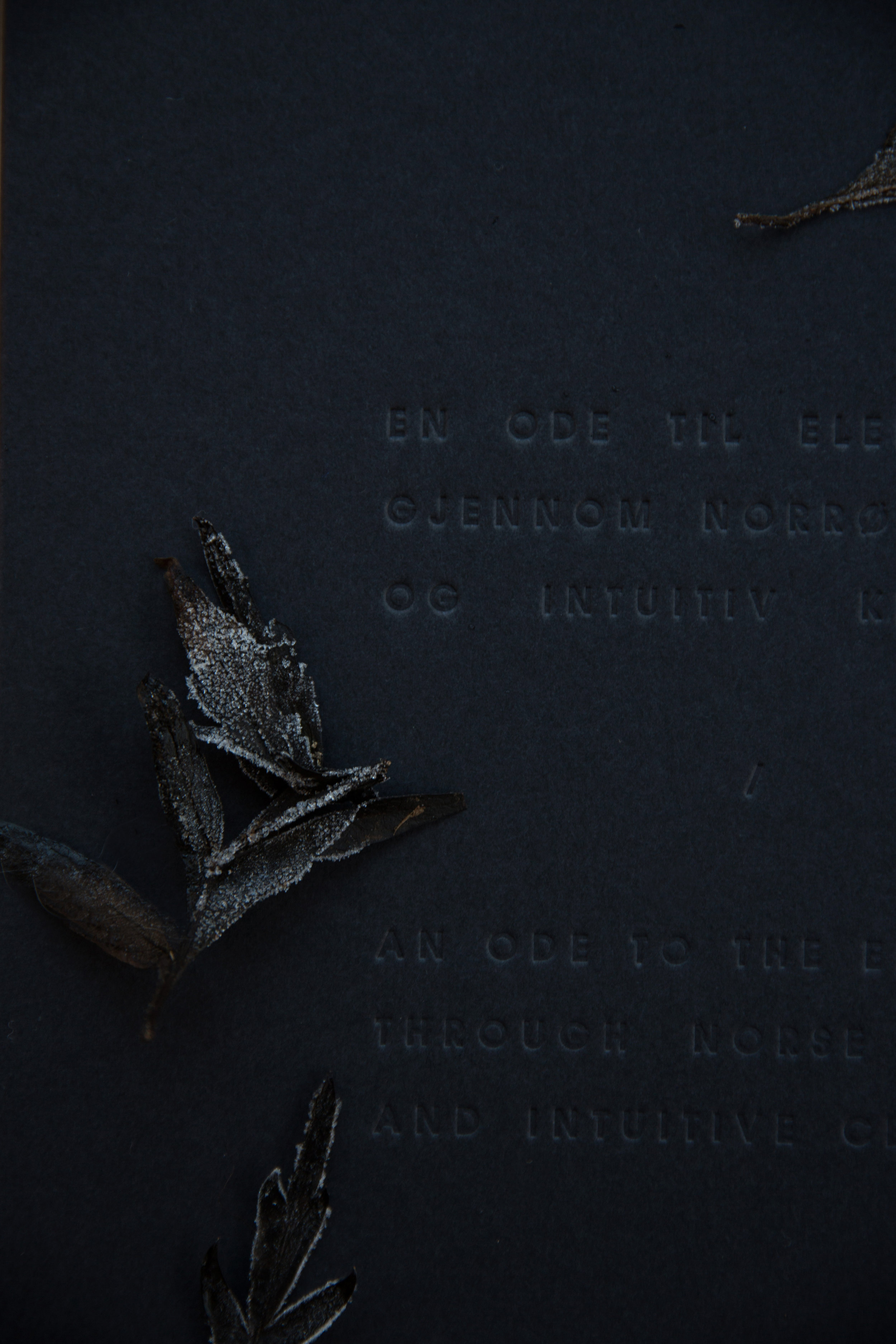 En ode til elementene    gjennom norrøn poesi    og intuitiv keramikk